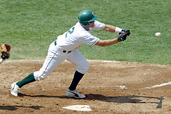 22 April 2006:  ....Titan Josh Bidzinski makes an offer for a bunt.....In CCIW, Division 3 action, the Titans of Illinois Wesleyan capped the Auggies of Augustana College by a scor of 3-2 in game one of a double card afternoon.  Games were held at Jack Horenberger field on the campus of Illinois Wesleyan University in Bloomington, Illinois