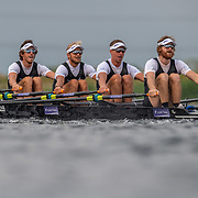 Cameron Crampton , Jordan Parry , Lewis Hollows & Nathan Flannery , New Zealand elite  Mens Quad<br /> <br /> Racing the heats at FISA World Rowing Cup III on Friday 12 July 2019 at the Willem Alexander Baan,  Zevenhuizen, Rotterdam, Netherlands. © Copyright photo Steve McArthur / www.photosport.nz