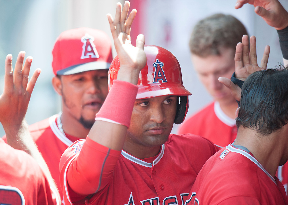 Roberto Baldoquin celebrates in the dugout after scoring during the Angels' preseason game against the Chicago Cubs at Angel Stadium Sunday.<br /> <br /> <br /> ///ADDITIONAL INFO:   <br /> <br /> angels.0404.kjs  ---  Photo by KEVIN SULLIVAN / Orange County Register  --  4/3/16<br /> <br /> The Los Angeles Angels take on the Chicago Cubs at Angel Stadium during a preseason game at Angel Stadium Sunday.<br /> <br /> <br />  4/3/16