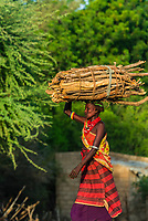 Dassanach tribe women carrying wood, Omo Valley, Southern Nations Nationalities and People's Region, Ethiopia.