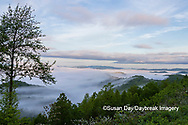 66745-04915 Early morning fog along Foothills Parkway Great Smoky Mountains National Park TN