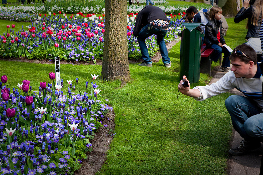 Photographing flowers at the Keukenhof tulip and flower show in Lisse, Holland - Netherlands at the Keukenhof tulip and flower show in Lisse, Holland - Netherlands. Note the underwear on show. Editorial Use only.
