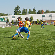 Surrey Soccer