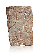 Hittite relief sculpted orthostat panel of a lion from Tell Halaf, ancient Guzana, Syria, iX cent BC, Louvre Museum. Cat no 19804. White background