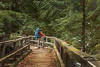 Hiker register kiosk at Baker Lake Trailhead, North Cascades Washington