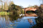 Swans on River Deben by red brick bridge, Ufford, Suffolk, England
