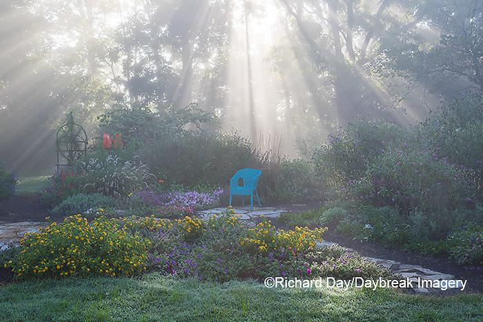 63821-23709 Sun rays in fog in flower garden, Marion Co., IL