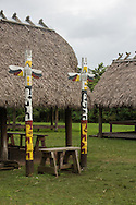 Miccosukee tribe and Panther clan tree island in the Everglades.