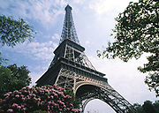 Wide angle view of the Eiffel Tower, Paris, France with trees in bloom