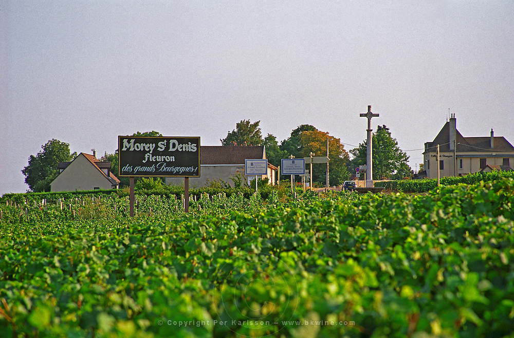 Sign in the vineyard, Morey Saint Denis, and the village, Bourgogne