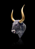 Minoan  bulss head shaped rhython with go;d horns, from the  Knossos-Little Palace 1600-1450 BC, Heraklion Archaeological  Museum, black background.<br /> <br /> There is a hole on the bulls neck for filling the hollow head and a hoile in its snout for pouring. .<br /> <br /> If you prefer to buy from our ALAMY PHOTO LIBRARY  Collection visit : https://www.alamy.com/portfolio/paul-williams-funkystock/minoan-art-artefacts.html . Type -   Heraklion   - into the LOWER SEARCH WITHIN GALLERY box. Refine search by adding background colour, place, museum etc<br /> <br /> Visit our MINOAN ART PHOTO COLLECTIONS for more photos to download  as wall art prints https://funkystock.photoshelter.com/gallery-collection/Ancient-Minoans-Art-Artefacts-Antiquities-Historic-Places-Pictures-Images-of/C0000ricT2SU_M9w