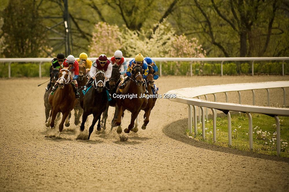 Horse race at Keeneland Racetrack, 5:12:02 PM on 04/24/08.  Lexington, KY USA.