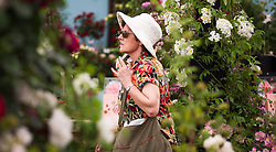 © Licensed to London News Pictures. 08/07/2013. London, UK. A visitor to the 'Roses and Floristry Vintage Festival' walks through flower displays at the press view for the Royal Horticultural Society's Hampton Court Palace Flower Show today (08/07/2013). Photo credit: Matt Cetti-Roberts/LNP