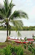 Costa Rica 1-14_23-09 Tortuguero National Park day 2 & 3