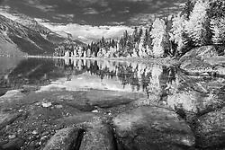 Autumn at Lake McDonald in Black and White. Glacier National Park