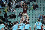 Jarrad Hoeata wins a lineout. NSW Waratahs v Otago Highlanders. Investec Super Rugby Round 17 Match, 11 June 2011. Sydney Football Stadium, Australia. Photo: Clay Cross / photosport.co.nz
