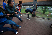 CHANGSHA, CHINA - FINLAND OUT<br /> <br /> Tug-of-war With Tiger<br /> <br /> Tourists play tug of war with male Siberian tiger Xing Xing as a part of wild training at Changsha zoo  in Changsha, Hunan Province of China. There is a live chicken in the bag, and the zoo will hold the match every day during the National Day holiday. <br /> ©Exclusivepix