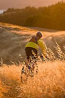 Young man biking near Bolinas Ridge; Mt. Tamalpais State Park. Golden Gate National Recreation Area. San Francisco,  CA