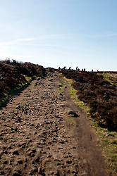 Mountain bikers and walkers follow the path leading from Highshaw Clough up to Derwent Edge..http://www.pauldaviddrabble.co.uk.11 March 2012 .Image © Paul David Drabble