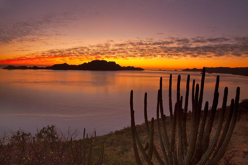 The sunrise over Isla Danzante in the Gulf of California from near Loreto Mexico