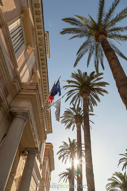 Low angle view of city hall and palm tree, Ajaccio, Corsica, France