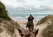 PUGLIA , ITALY, riding horses in  the beach near Torre Canne