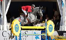 Lansink Jos (BEL) - King Kolibri<br /> Belgisch Kampioenschap Jumping - Lanaken 2011<br /> © Dirk Caremans