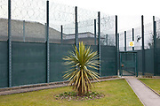 The palm tree in the gardens at HMP Downview. HM Prison Downview is a women's closed category prison. Downview is located on the outskirts of Banstead in Surrey, England. The prison is operated by Her Majesty's Prison Service. Downview Prison holds adult Sentenced Female prisoners and convicted and remanded female juveniles. The prison holds approximately 50% foreign nationals. Downview is divided into 4 Wings, A,B,C,D (D wing is a resettlement Wing), and the Juvenile Unit. All wings have single cell accommodation with in-cell electricity. The prison offers vocational training courses and NVQs for inmates. The resettlement wing provides opportunities for inmates to work and receive education outside the prison.
