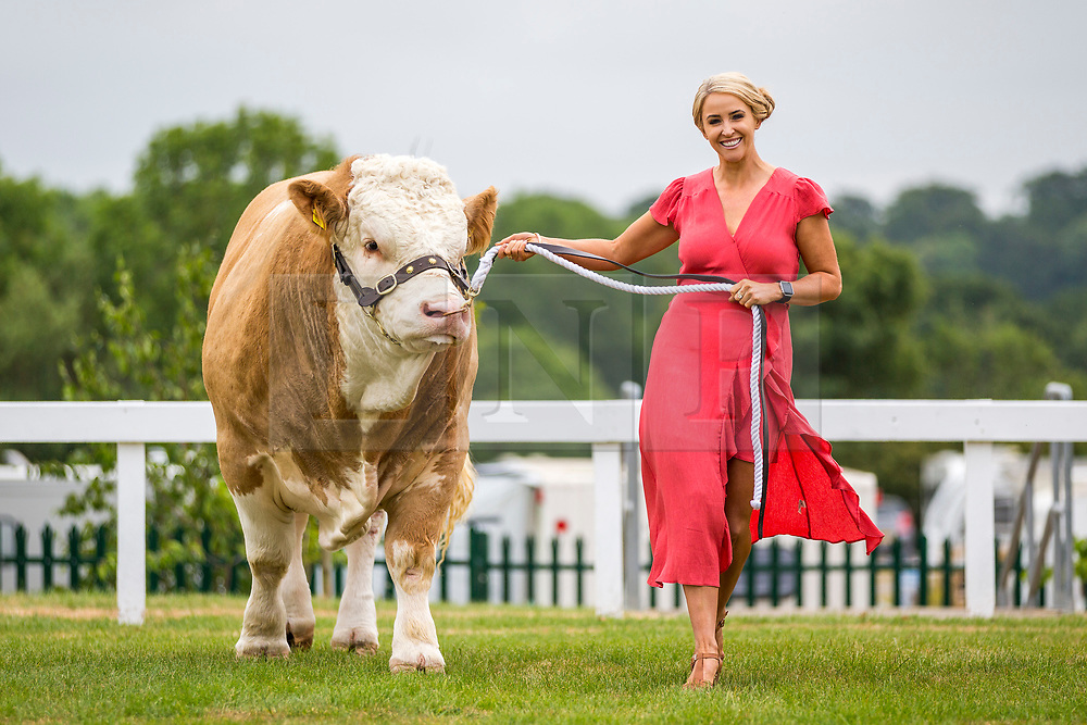 © Licensed to London News Pictures. 09/07/2018. Harrogate UK. Singer Lizzie Jones with a Harold Pope Simmental cow. Lizzie who's husband rugby league player Danny Jones died following a cardiac arrest while playing for Keighley Cougars in 2015 will make history as the first singer to sing in the Main ring at the 160th Great Yorkshire Show which starts tomorrow.  Photo credit: Andrew McCaren/LNP