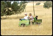 06: RURAL NSW SHEEP RANCH