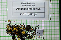 Deer Resistant Wildflower Mix seeds from American Meadows. Image taken with a Fuji X-H1 camera and 80 mm f/2.8 macro lens + 1.4x teleconverter