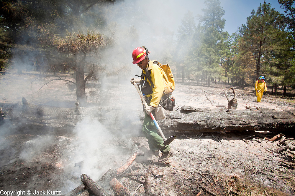 22 JUNE 2010 - FLAGSTAFF, AZ: Scott Van Eckhoutte (CQ) from Christopher Creek FD, works a hot spot on the line at the Schultz Fire burning north of Flagstaff, AZ. The fire has consumed more than 12,000 acres of forest land and burned within a few feet of homes in some neighborhoods in Flagstaff.   PHOTO BY JACK KURTZ
