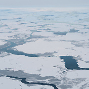 Newly formed ice broken with leads covers the waters of the Arctic Ocean.
