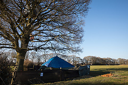 Great Missenden, UK. 28th February, 2021. A camp set up by environmental activists from HS2 Rebellion is pictured in front of a row of oak trees along Leather Lane. The activists have recently occupied the trees and set up the camp nearby following local reports that around twelve of the oak trees are threatened with felling for temporary works associated with the HS2 high-speed rail link.