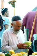 Israel, Tel Aviv Selecting the perfect Etrog at the 4 species market October 2006, Of the many symbols associated with Sukkot the most important are the Four Species. Etrog - The fruit of the goodly tree, also known as the citron. Palm branch - know as the lulav. Myrtle - the hadas and Willow - the aravah