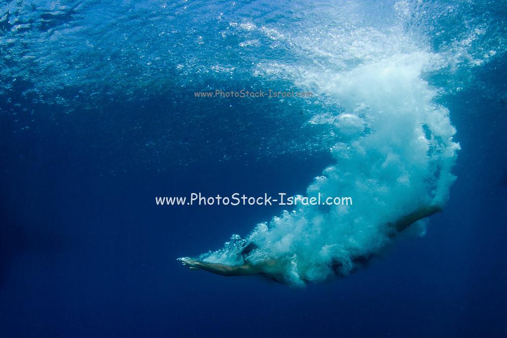Underwater shoot of man diving into the Mediterranean Sea