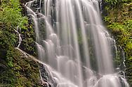 Berry Creek Falls (detail), Big Basin State Park, Santa Cruz County, California