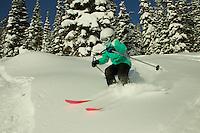 Jessica Laman (age 9) skiing at Jackson Hole, Wyoming