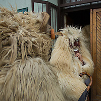 Local people in traditional buso dresses enter a pub as they celebrate the Buso Carnival in Mohacs, about 200 km south from the capital city Budapest on March 02, 2014. ATTILA VOLGYI