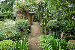 The pergola with brick path and euphobia in urn as focal point
