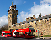 Red double decker tour buses outside Cardiff Castle, Cardiff, South Wales, UK by the Clock Tower