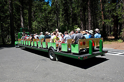 Public Transportation; tourists; tram; sightseeing, Yosemite National Park, California, USA.  Photo copyright Lee Foster.  Photo # california122254