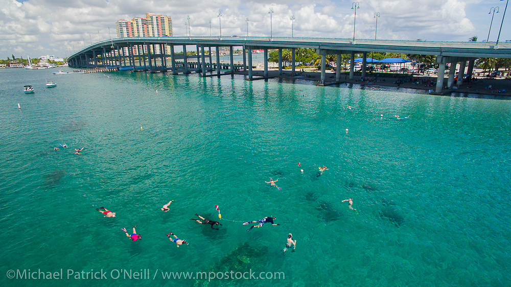The Lake Worth Lagoon, with the Blue Heron Bridge in the foreground,  in Palm Beach County, Florida, is one of the most popular scuba diving locations in the United States.