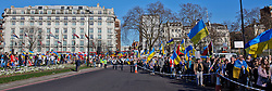 © Licensed to London News Pictures. 16/03/2014. London, UK. Ukrainians rally from Marble Arch to the Russian Embassy in Bayswater Road during the referendum day in Crimea. Photo credit : Andrea Baldo/LNP
