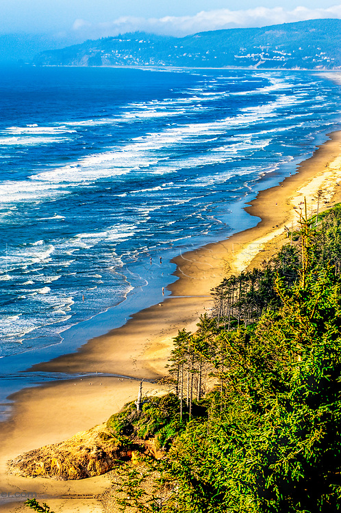 A view of the waves rolling along Oregon coast from Cape Lookout in Netarts Bay along Whiskey Creek Road on a sunny summer day with the gorgeous ocean waves.