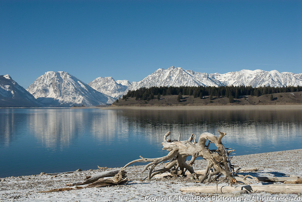 Several pieces of driftwood sit on the shore of Jackson Lake at Grand Teton National Park.  The temperature is 18 degrees, and the lake, which is a busy place during the summer months, sits in silence, broken only by the flapping wings of a bald eagle or other resident bird.