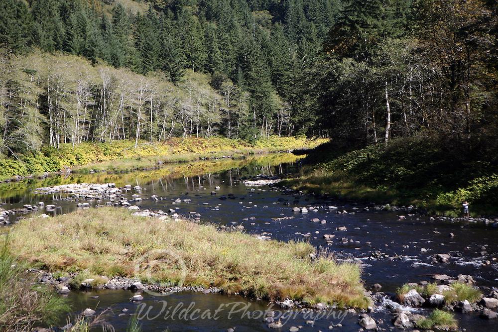 Salmonberry River