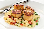 scallops,food photography,photos,miami,south florida,