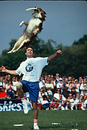 Washington DC  A dog Frisbee chanpionship competition on the Mall in  September 1994<br />Photo by Dennis Brack