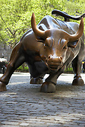 The famous tourist attraction, Wall Street Bull sculpture by Arturo Di Modica